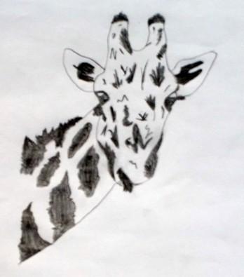 Dessin Libre dessin libre - atelier dessin du collège de l'agiot