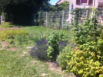 jardin potager ecole le bois joli sarcelles. Black Bedroom Furniture Sets. Home Design Ideas