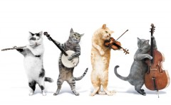 JINGLE CATS MUSIC