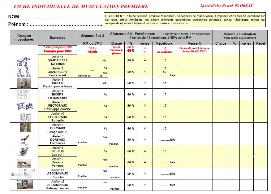 cycle d entrainement musculation pdf