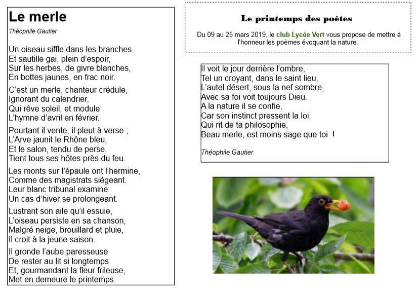2nd Poème Diffusé Par Le Lycée Vert Dans Le Cadre Du