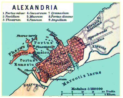 alexandrie.png