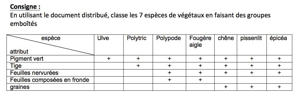 evaluation svt 6eme