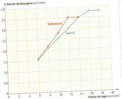 Svt en seconde au lycee evariste galois de sartrouville page 3 - Test vo2max sur tapis roulant ...