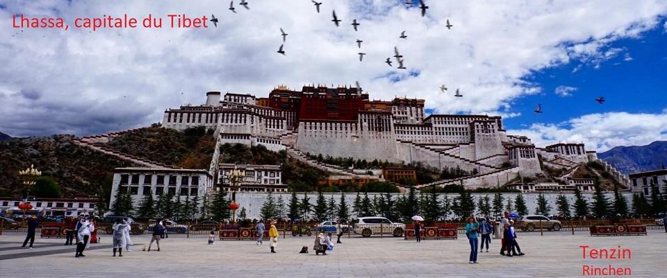 Tenzin Tibet 1.1.jpeg
