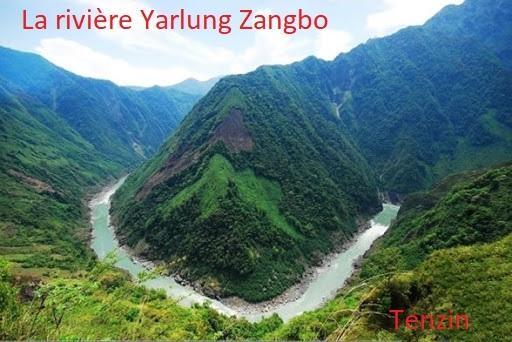 Tenzin Tibet 3.jpeg